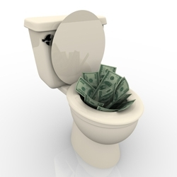 Image for Dutch schemes flushing money away